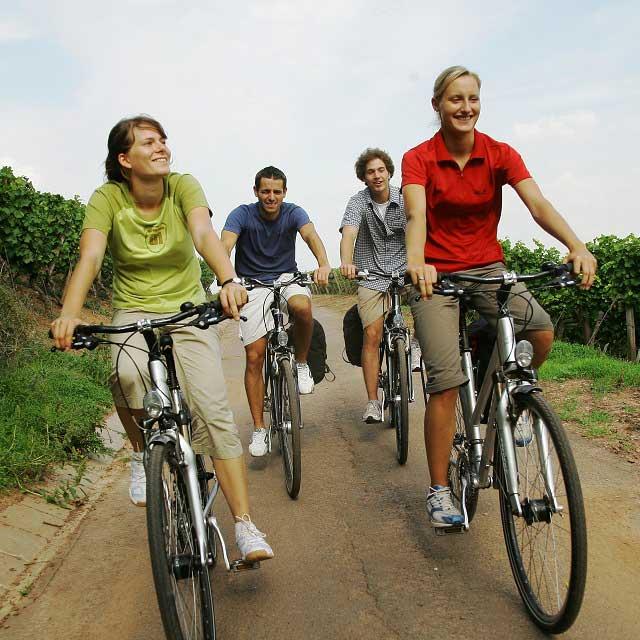 Aktiv im Weinberg E-biketouren