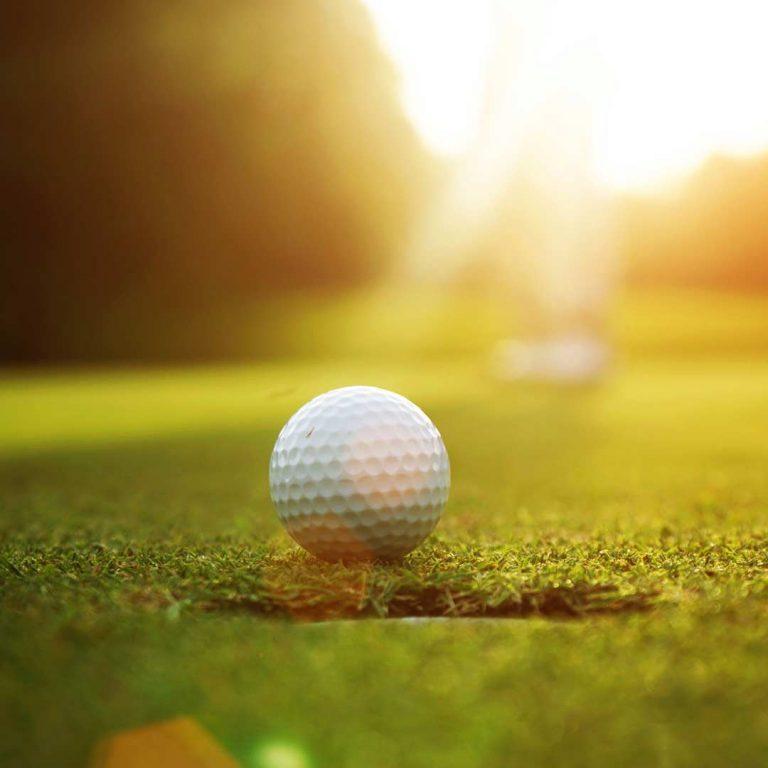 Aktiv im Weinberg Golf